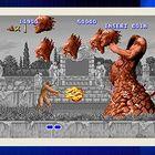 大型電玩模擬器-MAME
