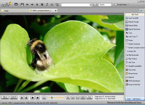 針對單張照片的瀏覽及編修功能