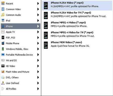 圖示顯示支援iPhone格式各種類型