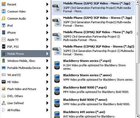 圖示顯示支援手機各影片格式類型